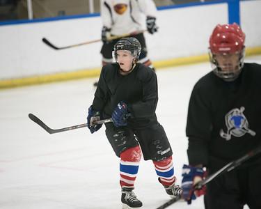 Adult Hockey Leagues