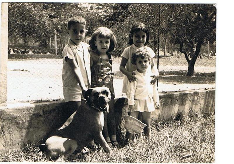 Dundo Ivone Silva e amigos