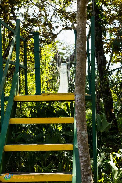 Melia-Resort-Colon-00788.jpg