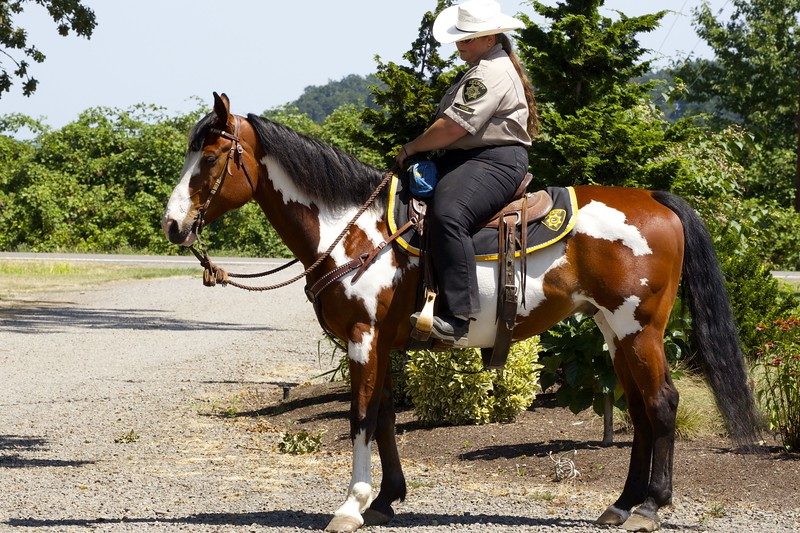 Members of Marion County Sheriff's posse USDCHS annual picnic 2014