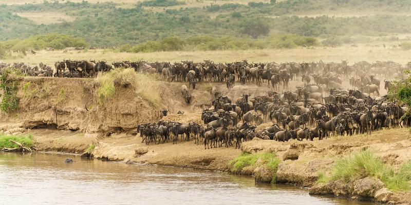 Kenya 2015-05698.jpg