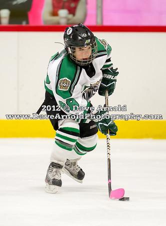 11/25/2012 - EHF Squirt Major (04) - Islanders Hockey Club vs South Shore Kings