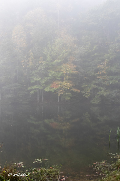 100718.  This and the next image are fog views of long lake.  Big difference from last night!
