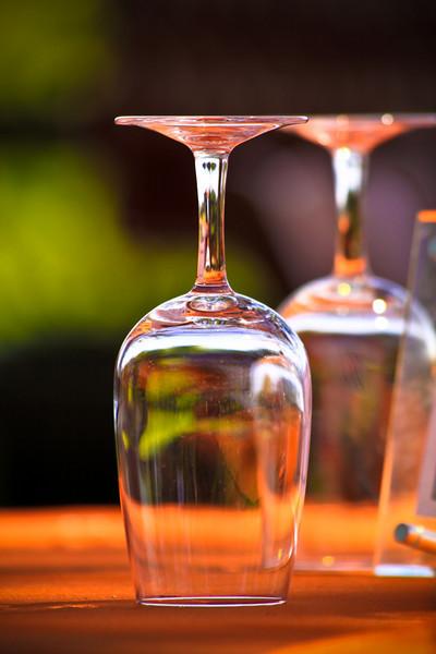 V Wine Celler Celebration
