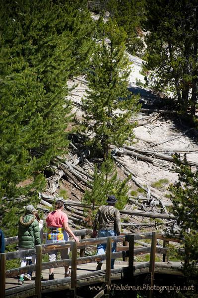 20100713_Yellowstone_2700.jpg