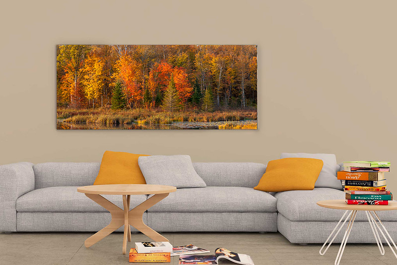 Living Room Fall Pano Mockup.jpg