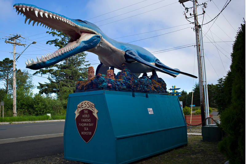 Yaquina Bay Sea Monster, Nessie. She is said to have been found by a night watchman in 1992. A sign tells what the creature really is: a Kronosaurus Queenslandicus or Crown Lizard