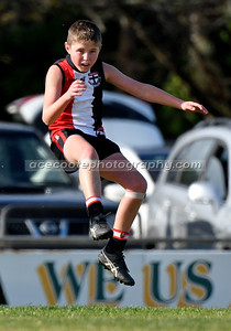 Junior Colts 2021 - Round 11 v Padthaway-Lucindale