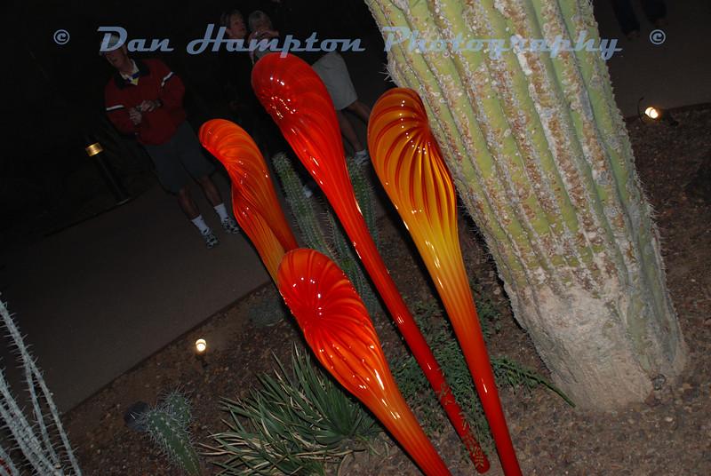 Desert Botanical_250.JPG
