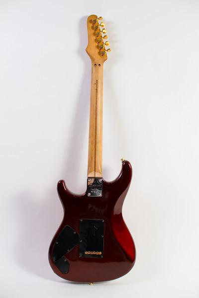 Fat Cat Guitars-220.jpg