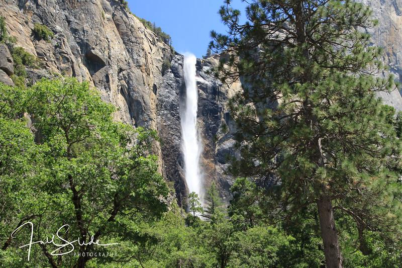 Yosemite 2018 -33.jpg