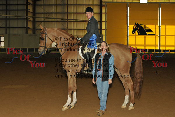 010 HA Hunter Pleasure Novice Horse