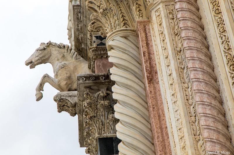 Siena2018March-0047.jpg