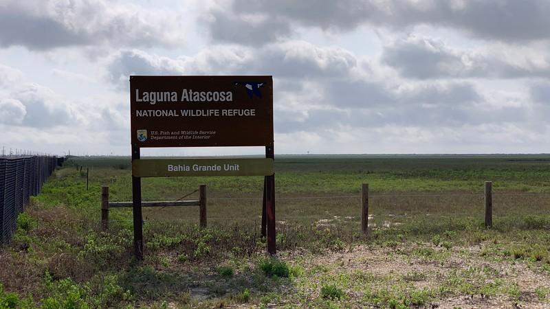 Laguna Atascosa NWR - Aplomado Falcon Platform