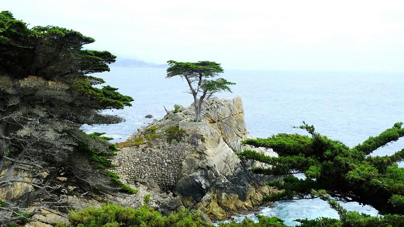 California Day 3 Monterey 05-29-2017 24.JPG