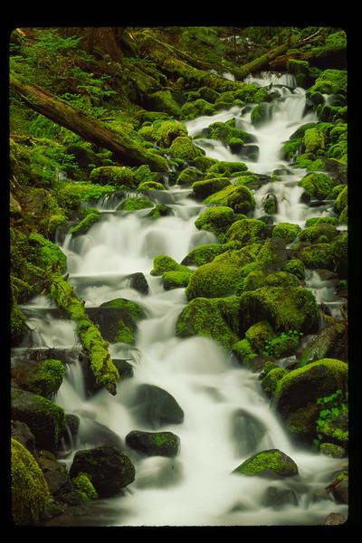 Montana Stream0054 (1).jpg