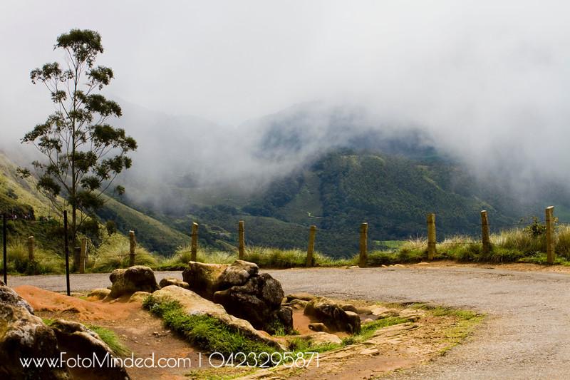 Eravikulam National Park, Munnar, India