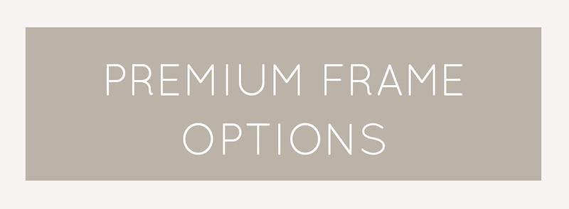 Premium frame options.jpg