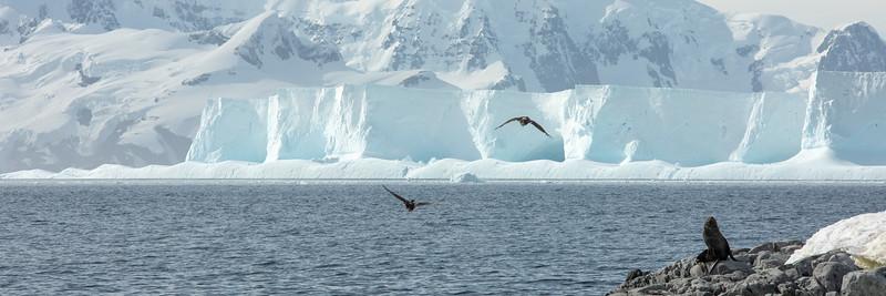 2019_01_Antarktis_05857.jpg