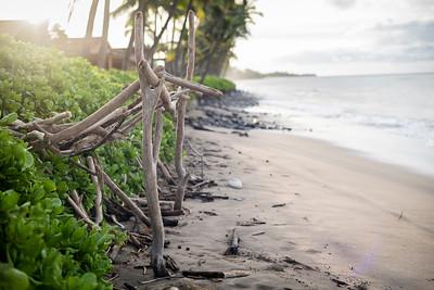 2020 High Five the Wave Maui II