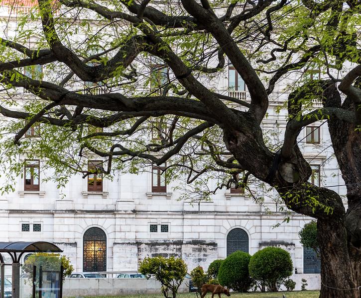 Lisbon 173.jpg