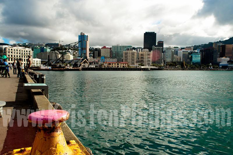 Wellington10331.jpg