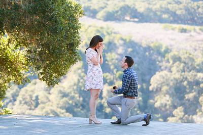 DeAnna + David: Proposal