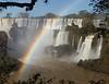 Dusky Swift Crossing Rainbow
