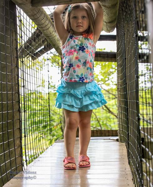 2016-07-17 Fort Wayne Zoo 609LR.jpg