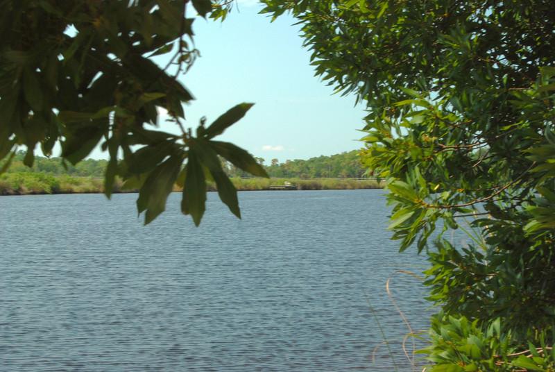 34 Tomoka River.jpg