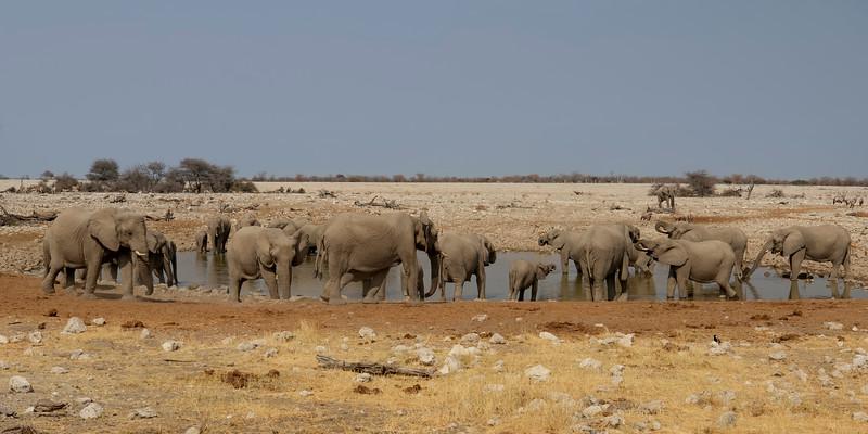 Namibia E4A4931.jpg