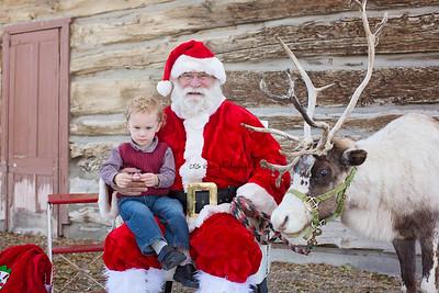 Reindeer2016