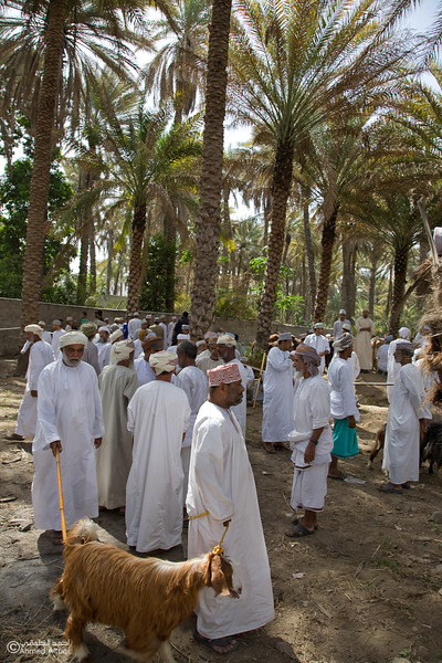 Traditional market (37)- Oman.jpg