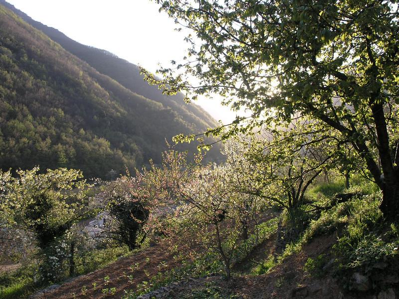 2006_04_12-19_00_19.jpg