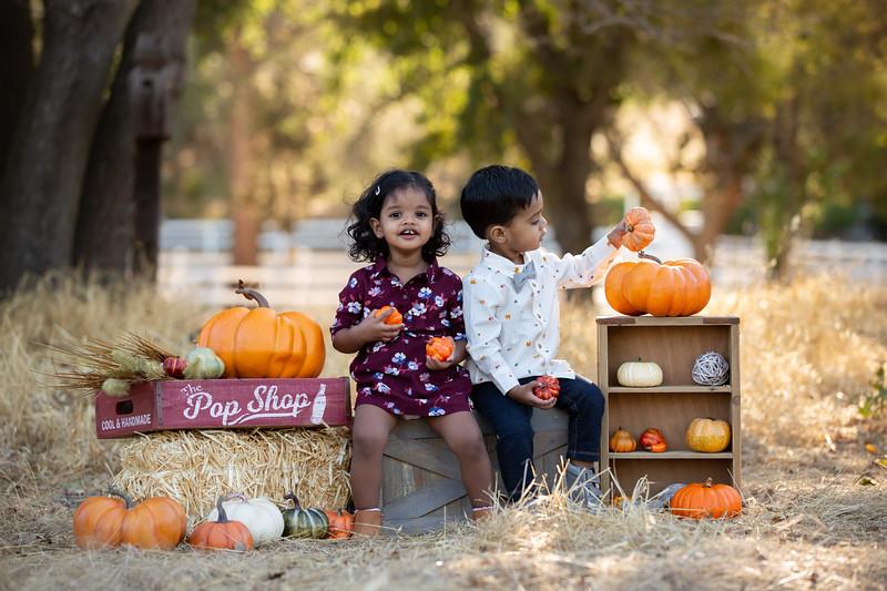 Patel Family Mini Session-13.jpg