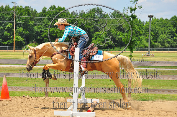 Southern Stockhorse Show June 13-14, 2014