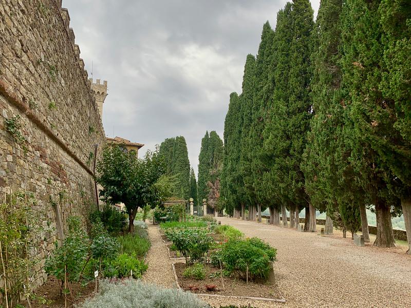 Tuscany_2018-55.jpg