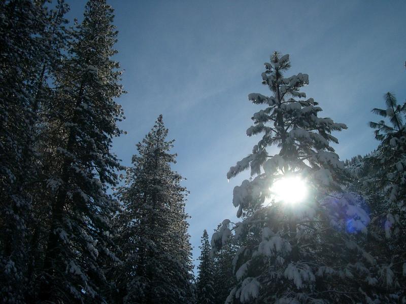 Yosemite CA USA