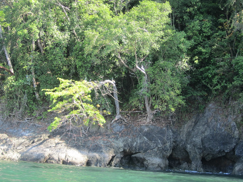 Panama Costa Rica 2013 555.jpg