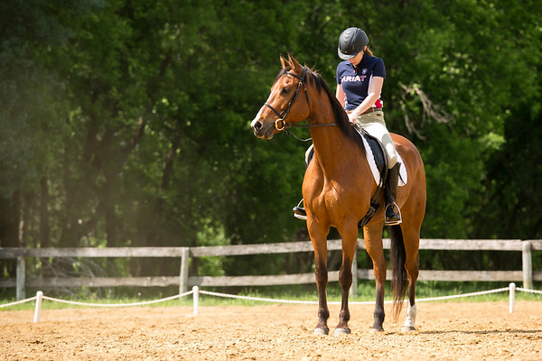 3 Ring Circus Schooling Show- May 2016