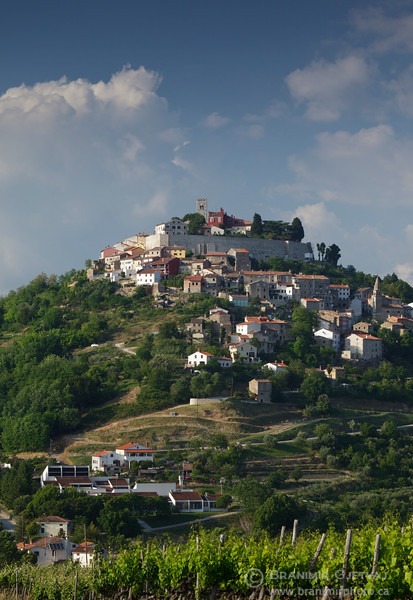 View of the medieval town of Motovun. Istria, Croatia