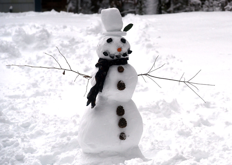 A view of this freshly made snowperson on Raddin Rd in Groton. NVV/ David H. Brow