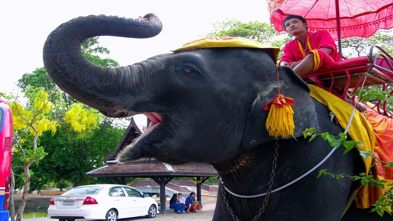 Journeys 2009-Thailand