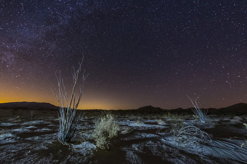 Alien Landscape in the Anza-Borrego Desert