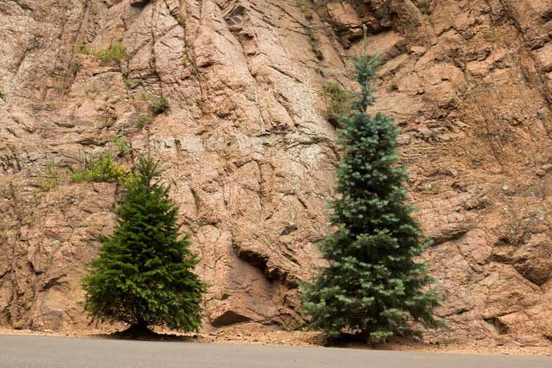 Colorado Springs-100.jpg