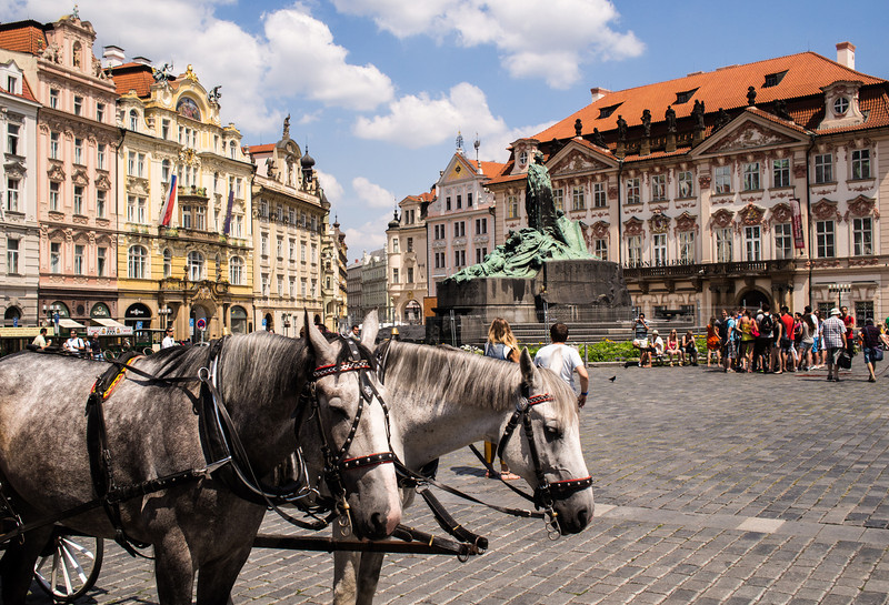 Old Square - horse carriage rides!