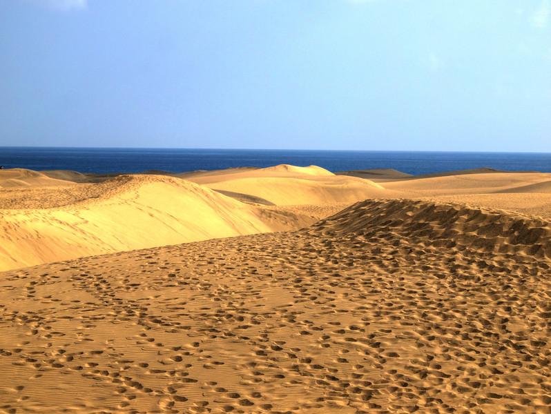 Sanddunes1.jpg