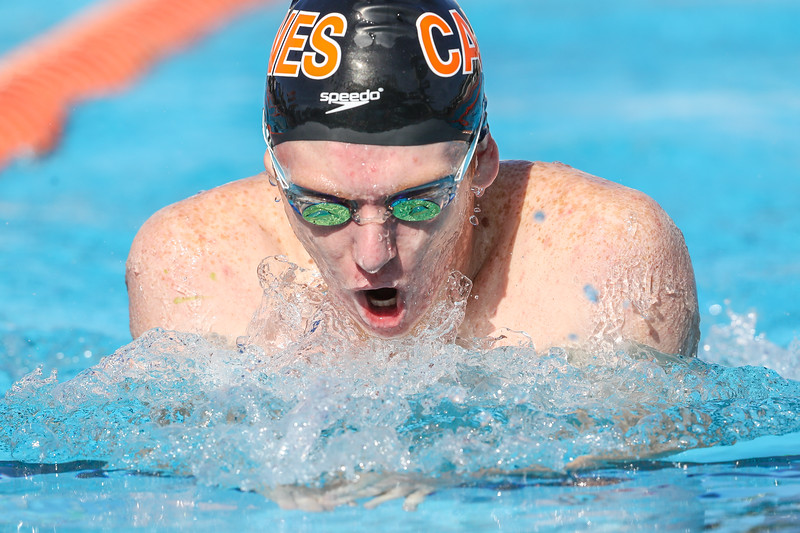 Canes Swimming