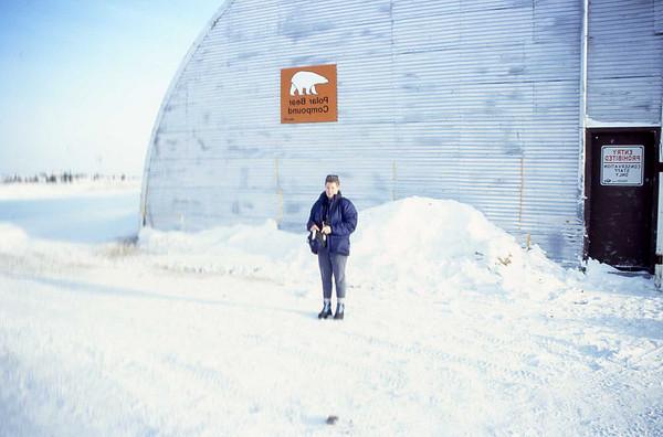 Polar Bears in Churchill, Manitoba - Nov. 2003