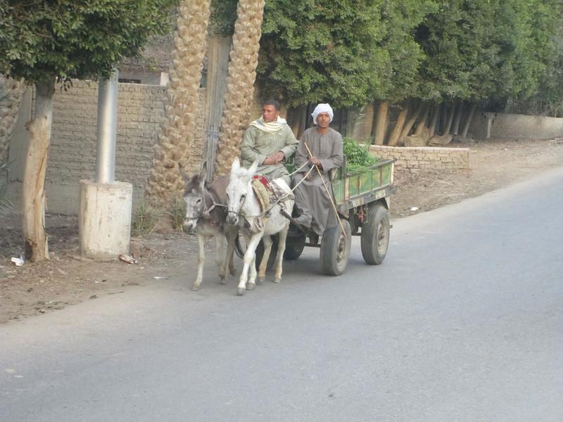 Egypt2 122.JPG